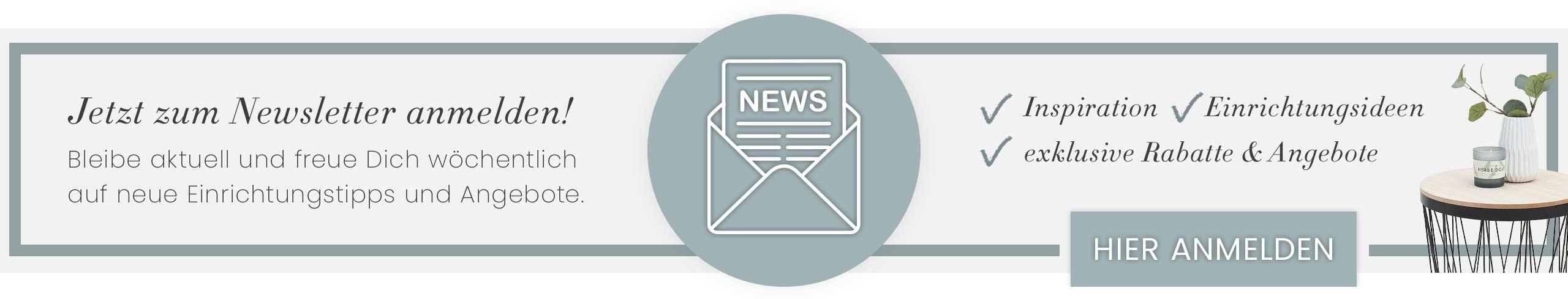 Newsletter Banner Footer