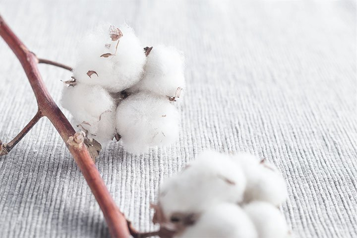 Eigenschaft Baumwolle