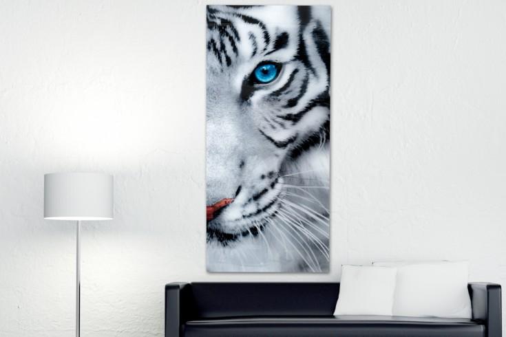 Faszinierender Kunstdruck FIXION 160x70cm Wandbild aus Glas Tiger