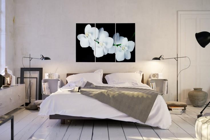 Imposantes Bild ORCHIDEE 3-teiligig 30x60cm Kunstdruck auf Glas