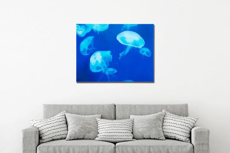 Faszinierendes Bild MEDUSE 60x80cm Glas Quallen Design Kunstdruck
