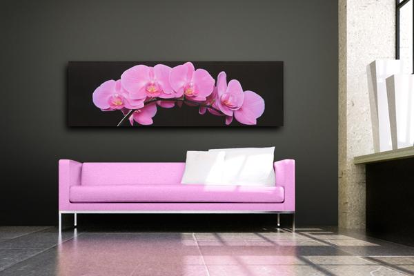 Beeindruckender Kunstdruck ORCHIDEE pink 45x140cm Bild Leinwand