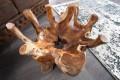 Stylischer Couchtisch AMAZONA rund 90 cm Teak Wurzelholz mit Glasplatte